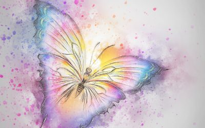Butterfly Symbolism and Meaning